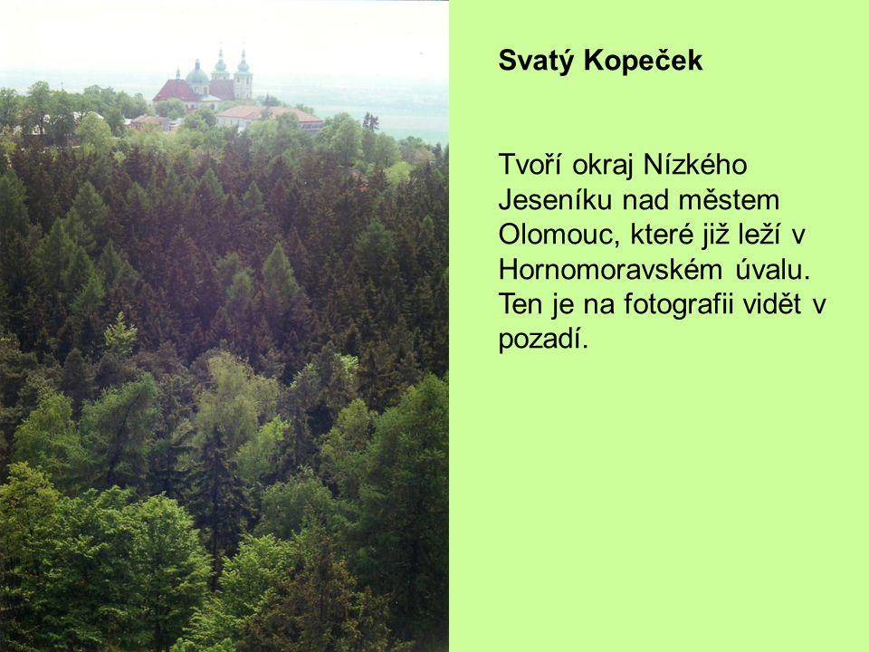Svatý Kopeček Tvoří okraj Nízkého Jeseníku nad městem Olomouc, které již leží v Hornomoravském úvalu.