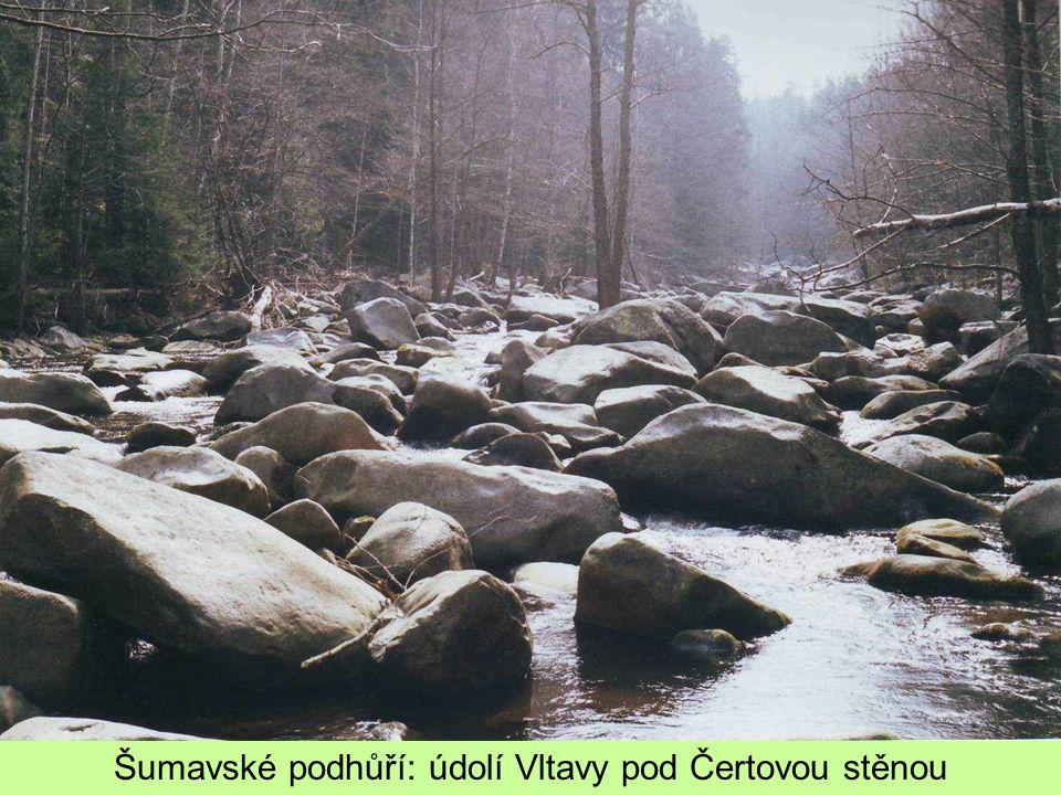 Šumavské podhůří: údolí Vltavy pod Čertovou stěnou