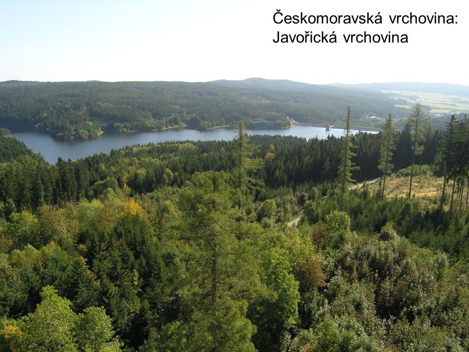 Českomoravská vrchovina: Javořická vrchovina