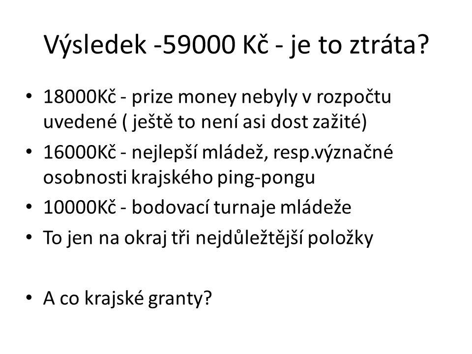 Výsledek -59000 Kč - je to ztráta.