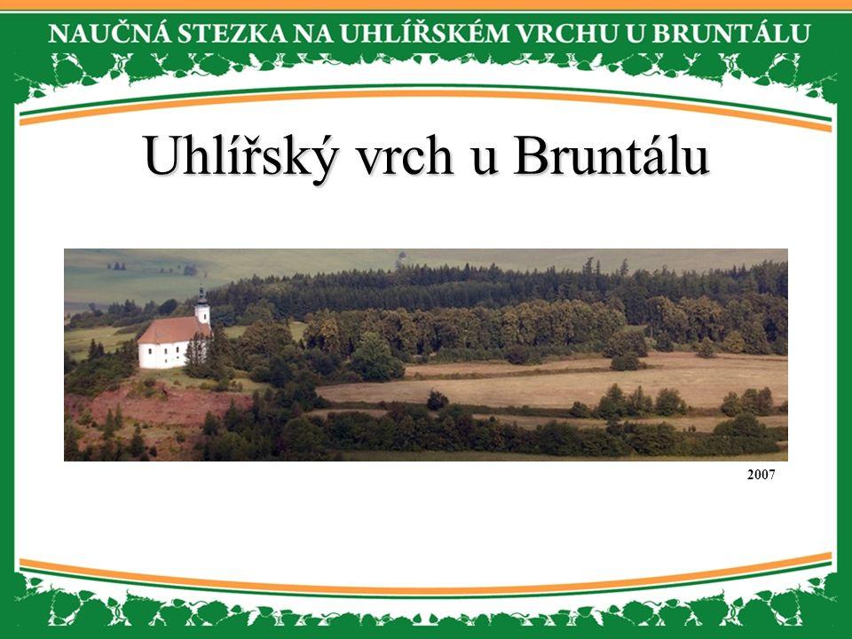 Uhlířský vrch u Bruntálu 2007