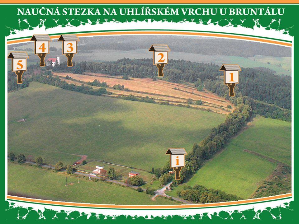 Úvodní panel Vám poskytne všeobecné informace o lokalitě Uhlířského vrchu a naučné stezce.