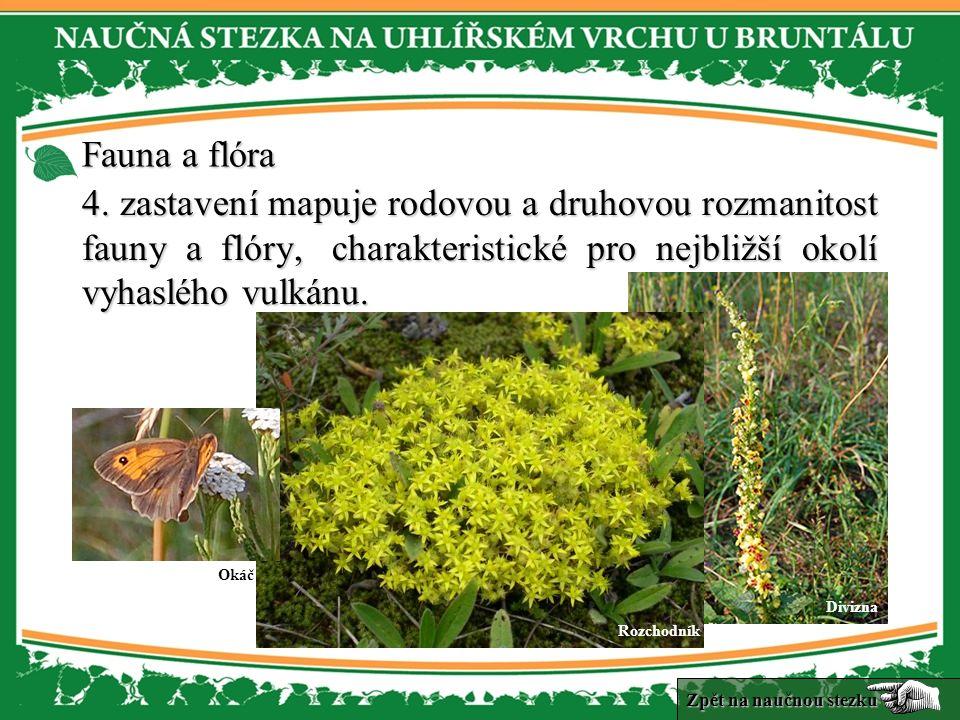 Fauna a flóra Fauna a flóra 4.