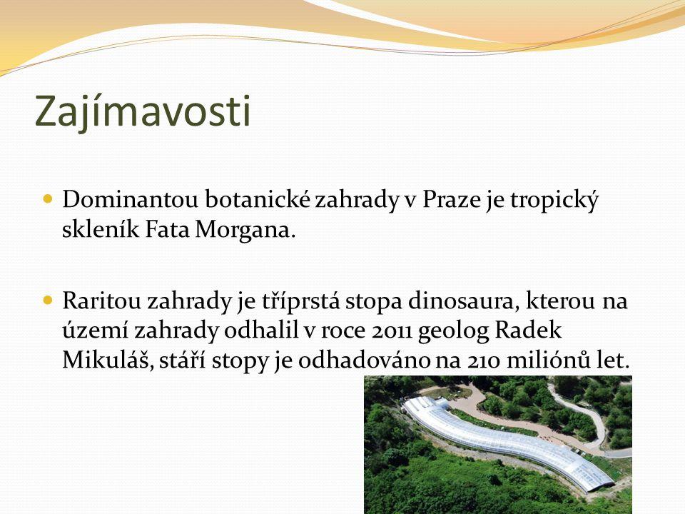 Zajímavosti Dominantou botanické zahrady v Praze je tropický skleník Fata Morgana. Raritou zahrady je tříprstá stopa dinosaura, kterou na území zahrad