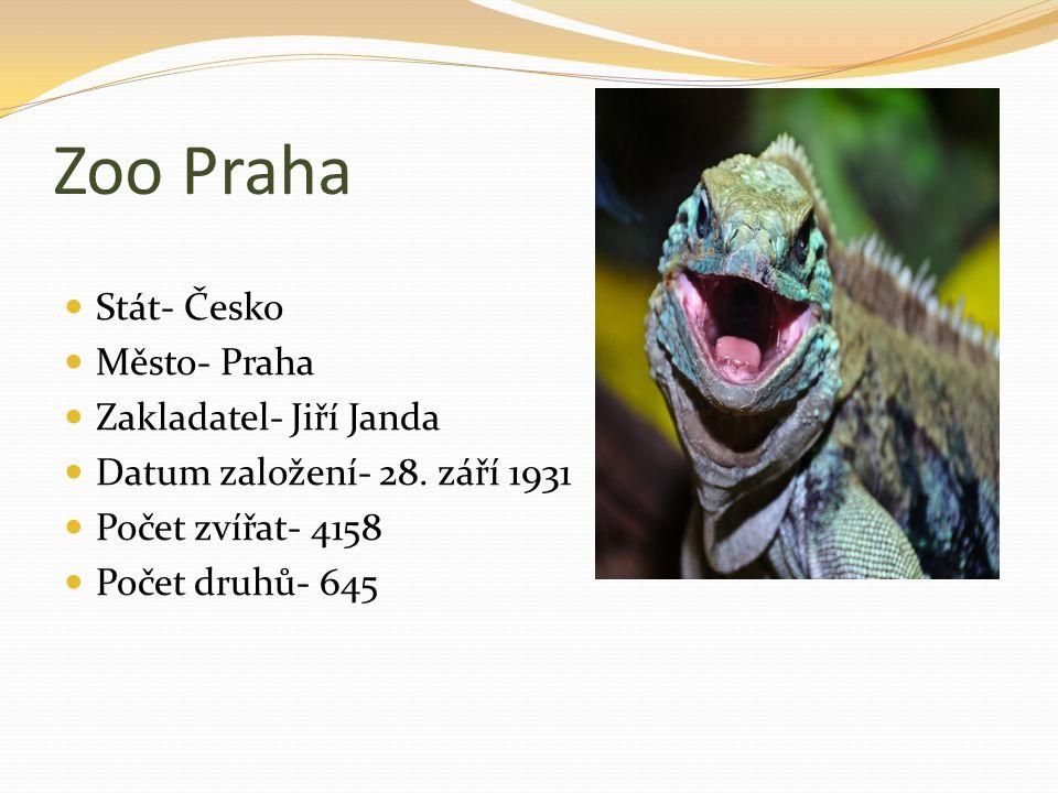 Zoo Praha Stát- Česko Město- Praha Zakladatel- Jiří Janda Datum založení- 28. září 1931 Počet zvířat- 4158 Počet druhů- 645