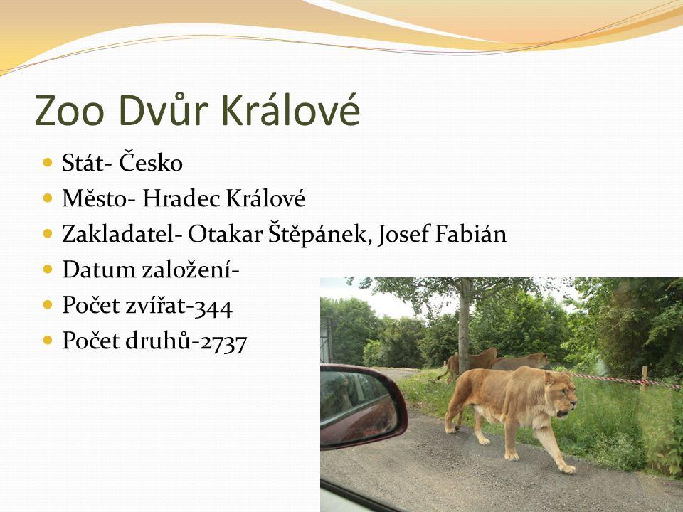 Zoo Dvůr Králové Stát- Česko Město- Hradec Králové Zakladatel- Otakar Štěpánek, Josef Fabián Datum založení- Počet zvířat-344 Počet druhů-2737