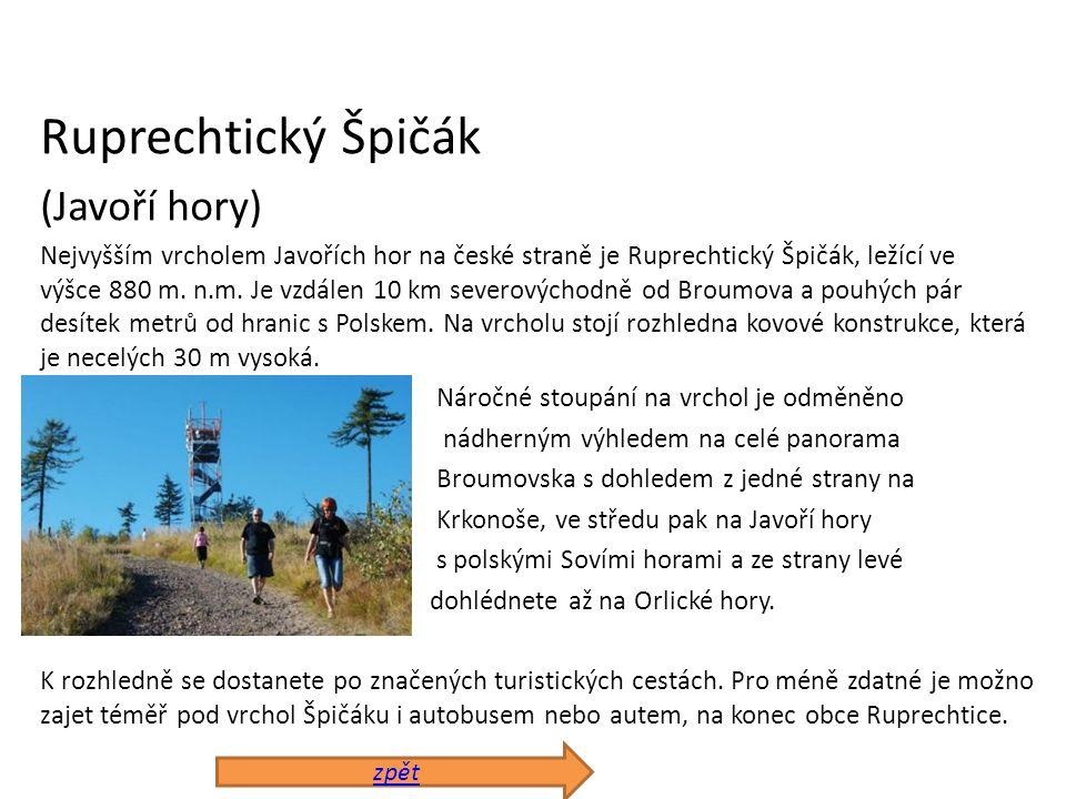 Ruprechtický Špičák (Javoří hory) Nejvyšším vrcholem Javořích hor na české straně je Ruprechtický Špičák, ležící ve výšce 880 m. n.m. Je vzdálen 10 km