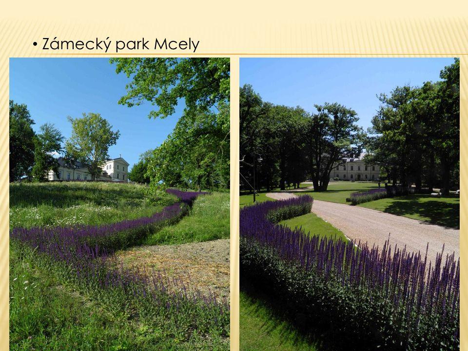 Zámecký park Mcely