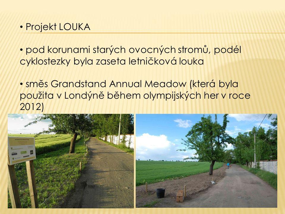 Projekt LOUKA pod korunami starých ovocných stromů, podél cyklostezky byla zaseta letničková louka směs Grandstand Annual Meadow (která byla použita v Londýně během olympijských her v roce 2012)