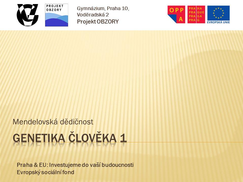 Praha & EU: Investujeme do vaší budoucnosti Evropský sociální fond Gymnázium, Praha 10, Voděradská 2 Projekt OBZORY Mendelovská dědičnost