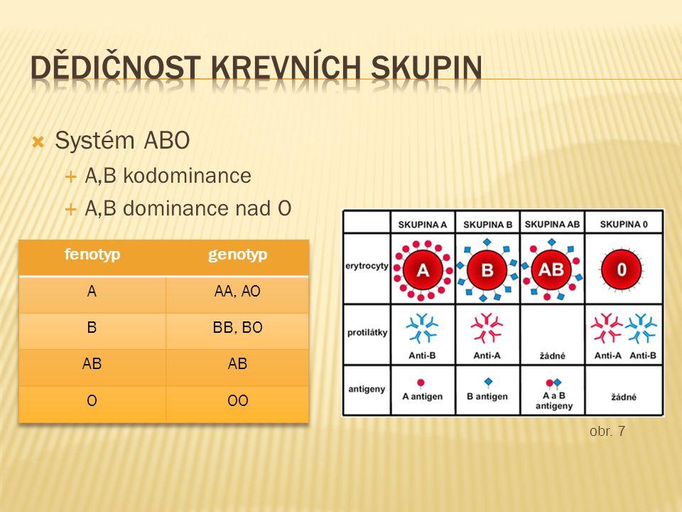  Systém ABO  A,B kodominance  A,B dominance nad O obr. 7