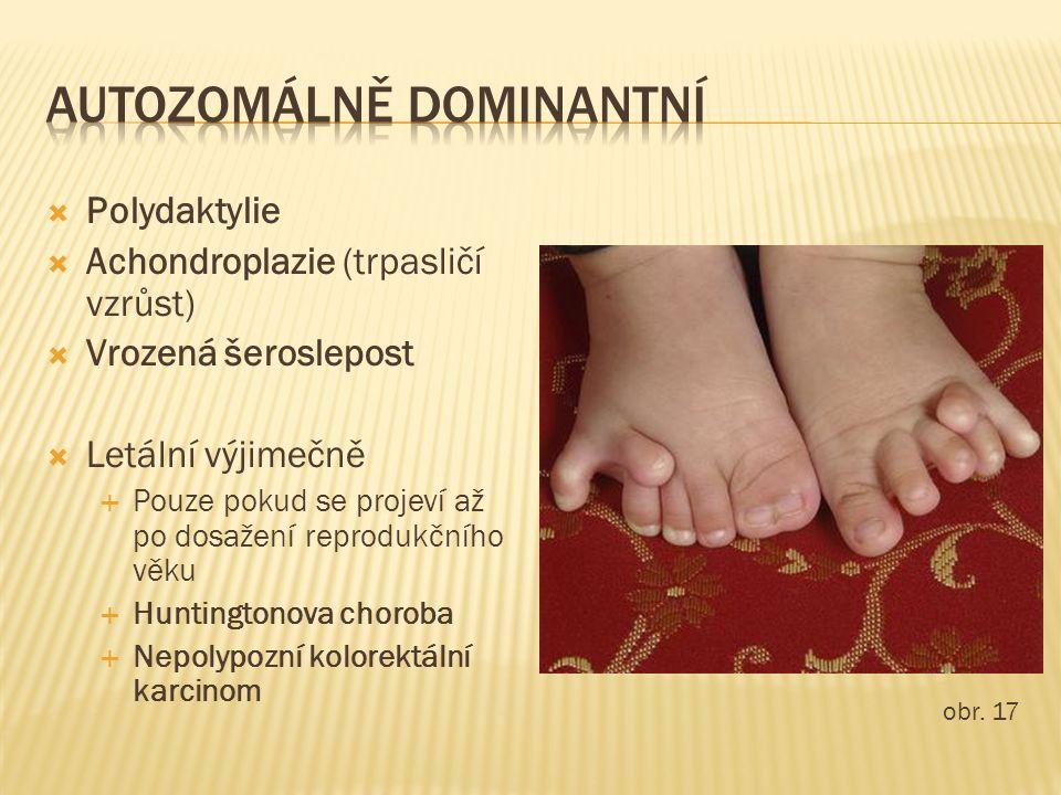  Polydaktylie  Achondroplazie (trpasličí vzrůst)  Vrozená šeroslepost  Letální výjimečně  Pouze pokud se projeví až po dosažení reprodukčního věk