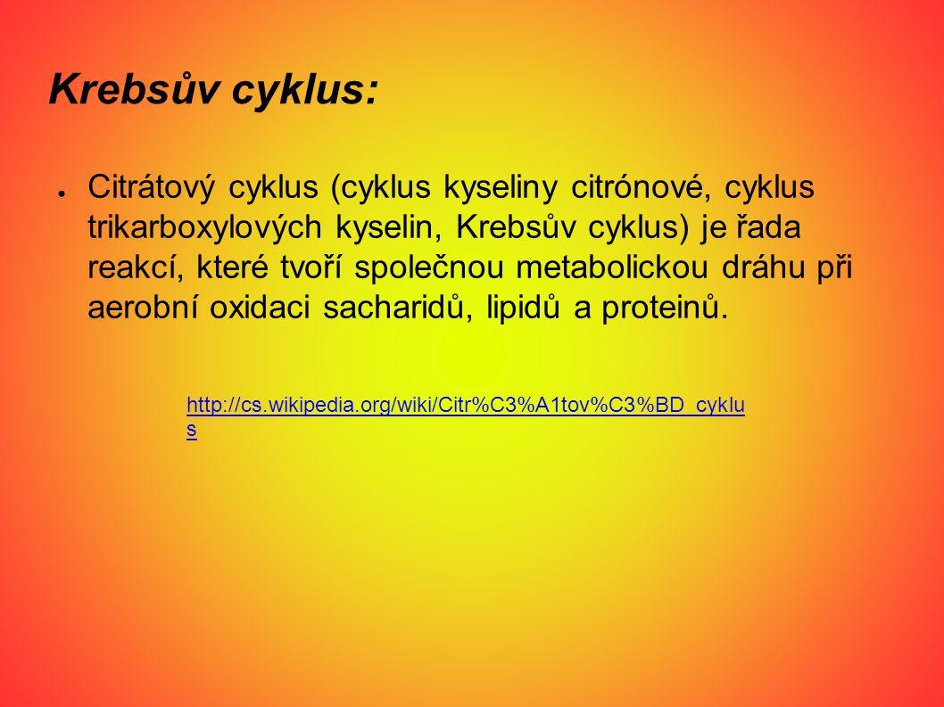 Krebsův cyklus: ● Citrátový cyklus (cyklus kyseliny citrónové, cyklus trikarboxylových kyselin, Krebsův cyklus) je řada reakcí, které tvoří společnou metabolickou dráhu při aerobní oxidaci sacharidů, lipidů a proteinů.