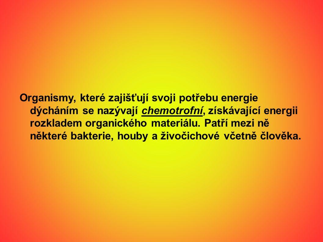 Organismy, které zajišťují svoji potřebu energie dýcháním se nazývají chemotrofní, získávající energii rozkladem organického materiálu.