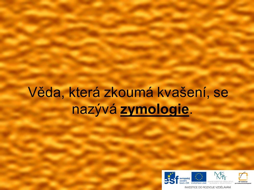 Věda, která zkoumá kvašení, se nazývá zymologie.