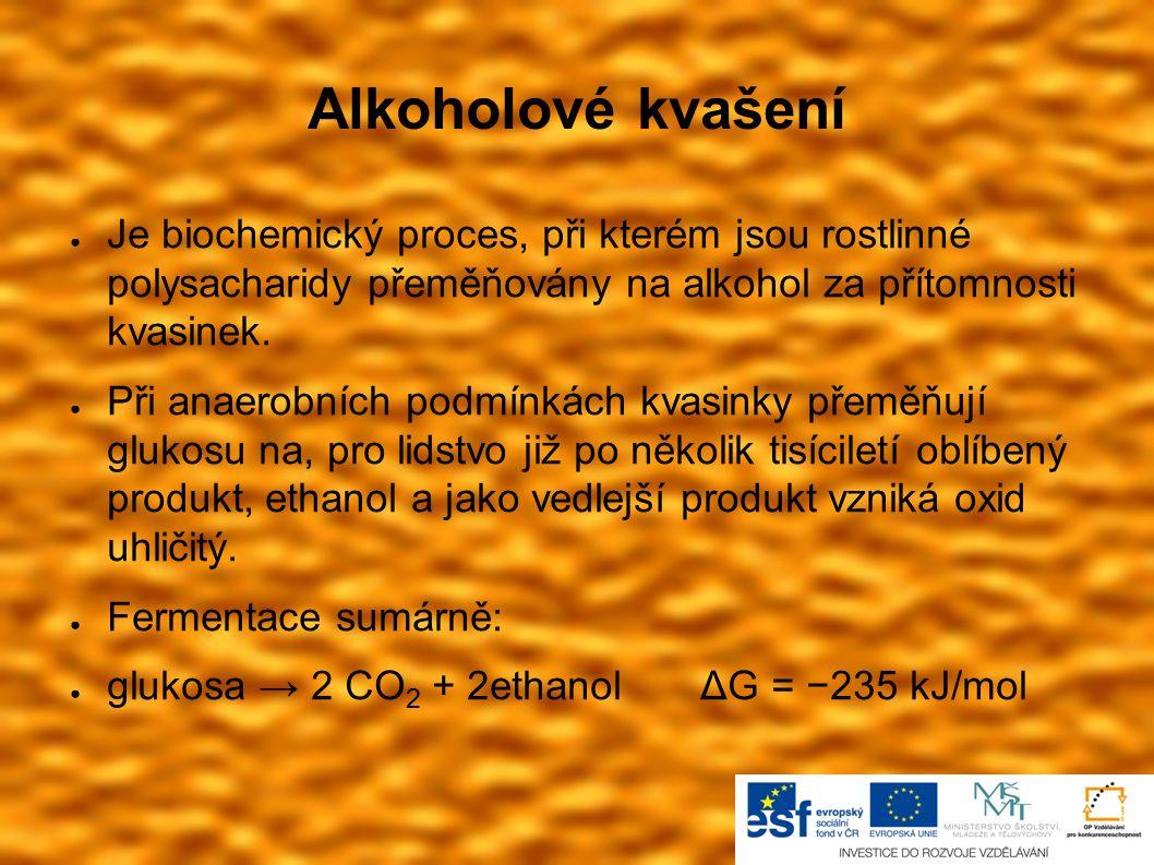 Alkoholové kvašení ● Je biochemický proces, při kterém jsou rostlinné polysacharidy přeměňovány na alkohol za přítomnosti kvasinek. ● Při anaerobních