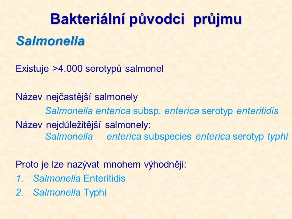 Salmonella Existuje >4.000 serotypů salmonel Název nejčastější salmonely Salmonella enterica subsp. enterica serotyp enteritidis Název nejdůležitější