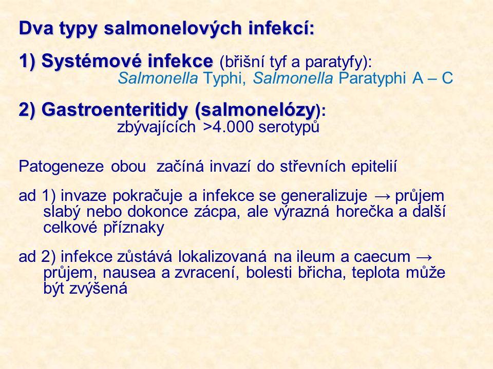 Dva typy salmonelových infekcí: 1) Systémové infekce 1) Systémové infekce (břišní tyf a paratyfy): Salmonella Typhi, Salmonella Paratyphi A – C 2) Gastroenteritidy (salmonelózy 2) Gastroenteritidy (salmonelózy ): zbývajících >4.000 serotypů Patogeneze obou začíná invazí do střevních epitelií ad 1) invaze pokračuje a infekce se generalizuje → průjem slabý nebo dokonce zácpa, ale výrazná horečka a další celkové příznaky ad 2) infekce zůstává lokalizovaná na ileum a caecum → průjem, nausea a zvracení, bolesti břicha, teplota může být zvýšená