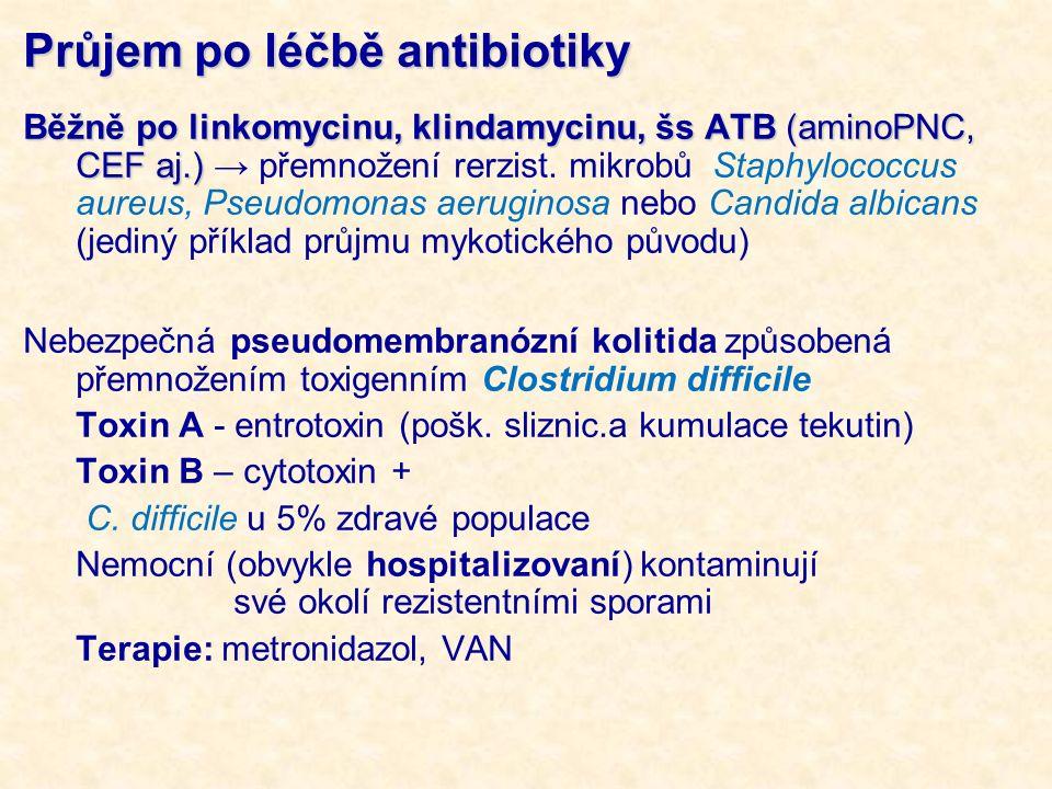Průjem po léčbě antibiotiky Běžně po linkomycinu, klindamycinu, šs ATB (aminoPNC, CEF aj.) Běžně po linkomycinu, klindamycinu, šs ATB (aminoPNC, CEF aj.) → přemnožení rerzist.