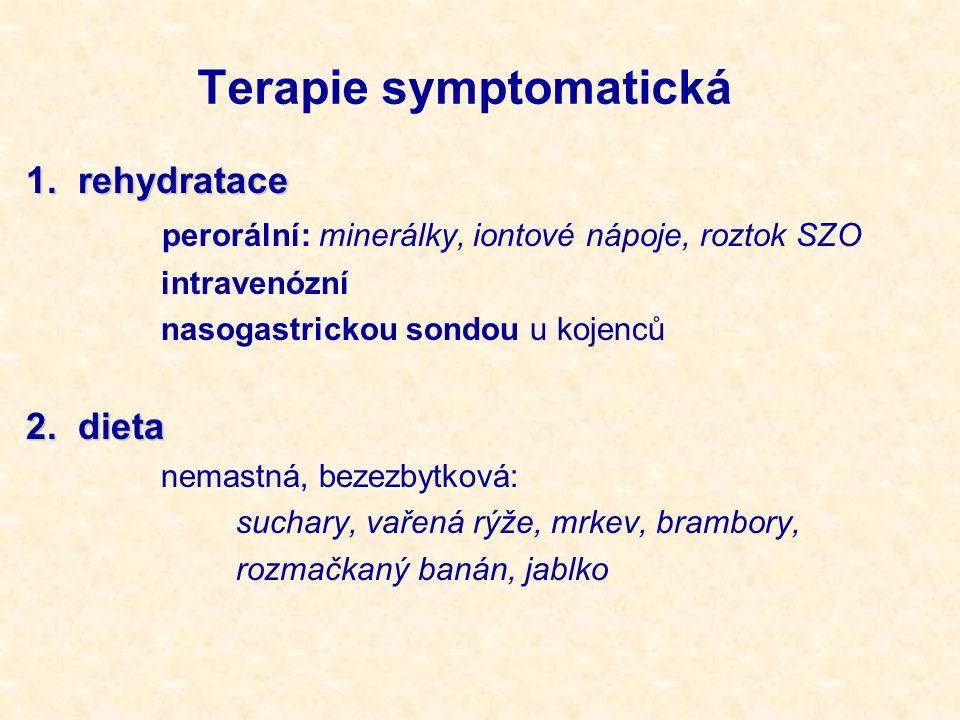 Terapie symptomatická 1. rehydratace perorální: minerálky, iontové nápoje, roztok SZO intravenózní nasogastrickou sondou u kojenců 2. dieta nemastná,