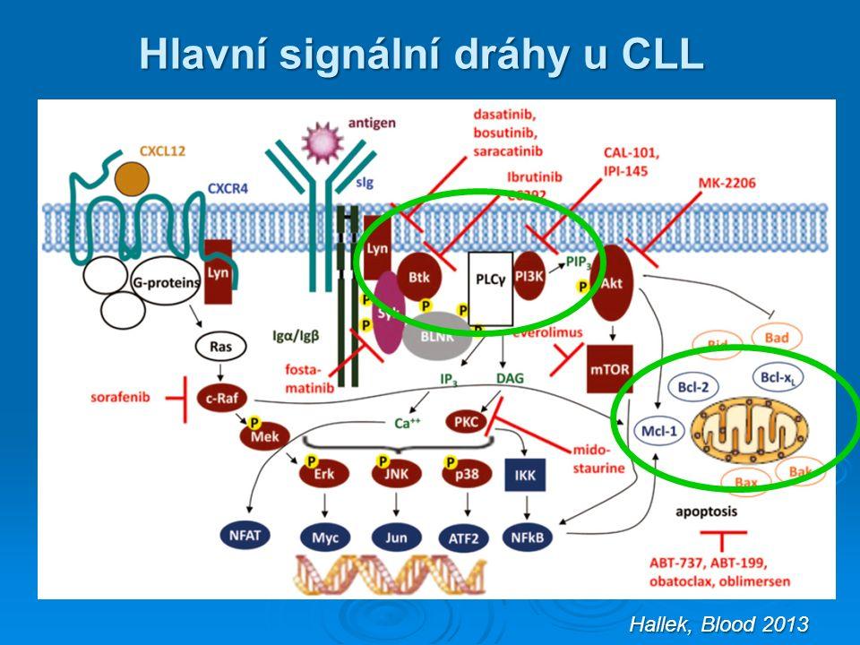 Hallek, Blood 2013 Hlavní signální dráhy u CLL