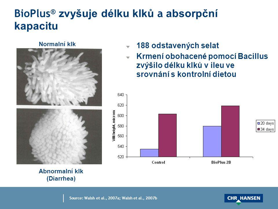 BioPlus ® zvyšuje délku klků a absorpční kapacitu 188 odstavených selat Krmení obohacené pomocí Bacillus zvýšilo délku klků v ileu ve srovnání s kontrolní dietou Source: Walsh et al., 2007a; Walsh et al., 2007b Normalní klk Abnormalní klk (Diarrhea)