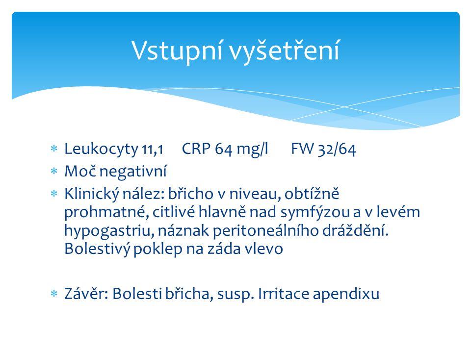  Leukocyty 11,1 CRP 64 mg/l FW 32/64  Moč negativní  Klinický nález: břicho v niveau, obtížně prohmatné, citlivé hlavně nad symfýzou a v levém hypogastriu, náznak peritoneálního dráždění.