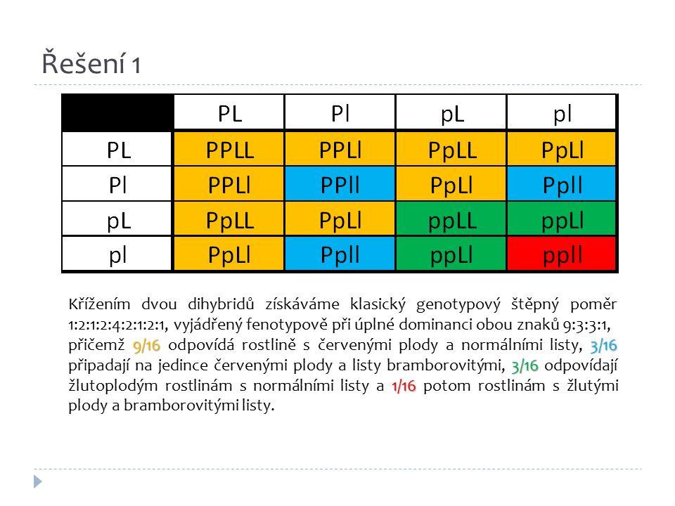 Řešení 1 Křížením dvou dihybridů získáváme klasický genotypový štěpný poměr 1:2:1:2:4:2:1:2:1, vyjádřený fenotypově při úplné dominanci obou znaků 9:3:3:1, 9/163/16 3/16 1/16 přičemž 9/16 odpovídá rostlině s červenými plody a normálními listy, 3/16 připadají na jedince červenými plody a listy bramborovitými, 3/16 odpovídají žlutoplodým rostlinám s normálními listy a 1/16 potom rostlinám s žlutými plody a bramborovitými listy.