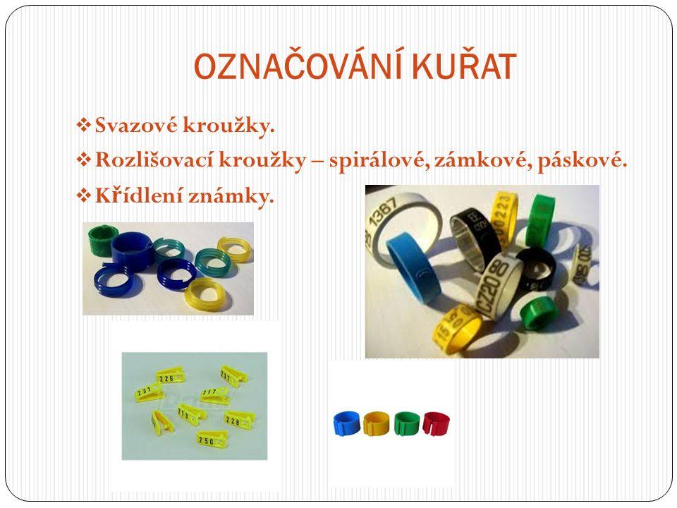 OZNAČOVÁNÍ KUŘAT  Svazové kroužky.  Rozlišovací kroužky – spirálové, zámkové, páskové.