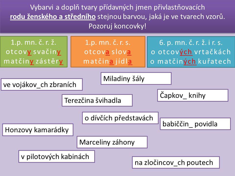 Vybarvi a doplň tvary přídavných jmen přivlastňovacích rodu ženského a středního stejnou barvou, jaká je ve tvarech vzorů.