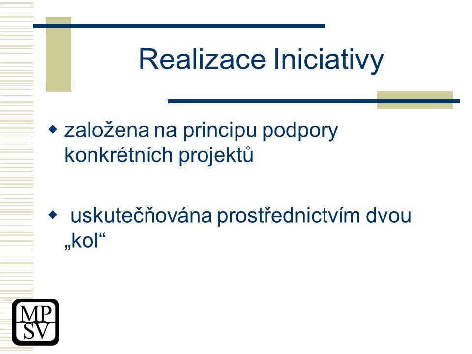 """Realizace Iniciativy  založena na principu podpory konkrétních projektů  uskutečňována prostřednictvím dvou """"kol"""