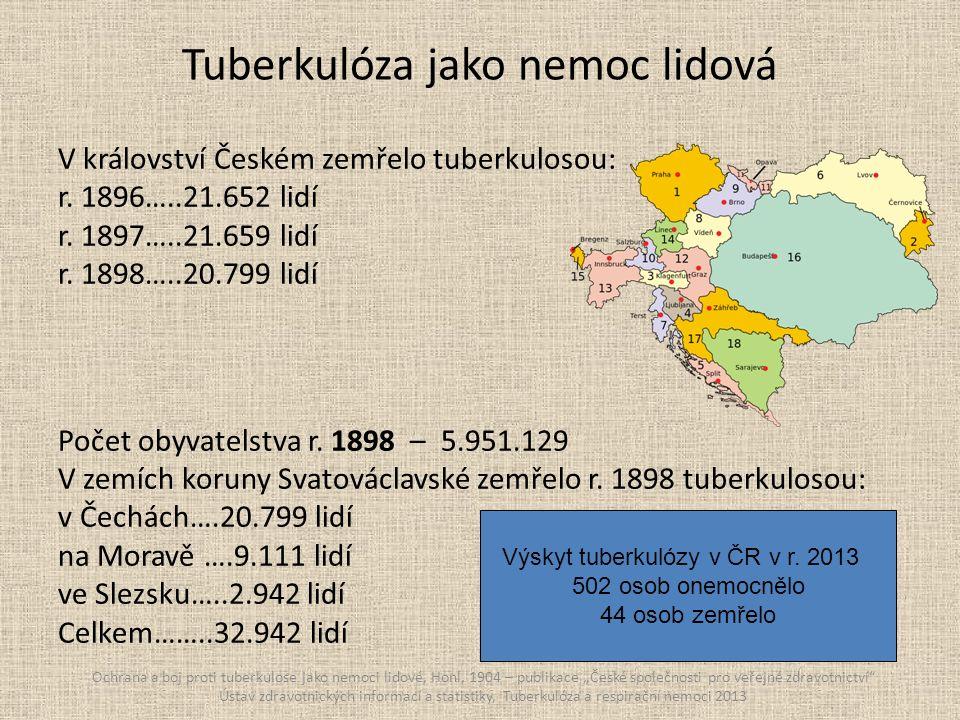 Příčiny smrti v Plzni v letech 1908 - 1911 Biostatické poměry králov.