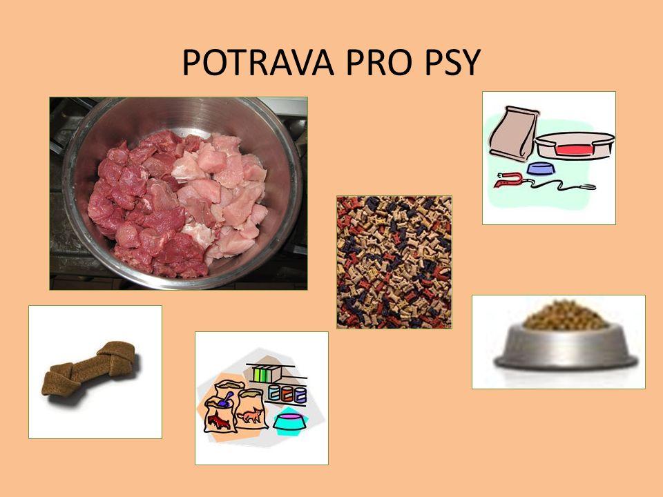 POTRAVA PRO PSY