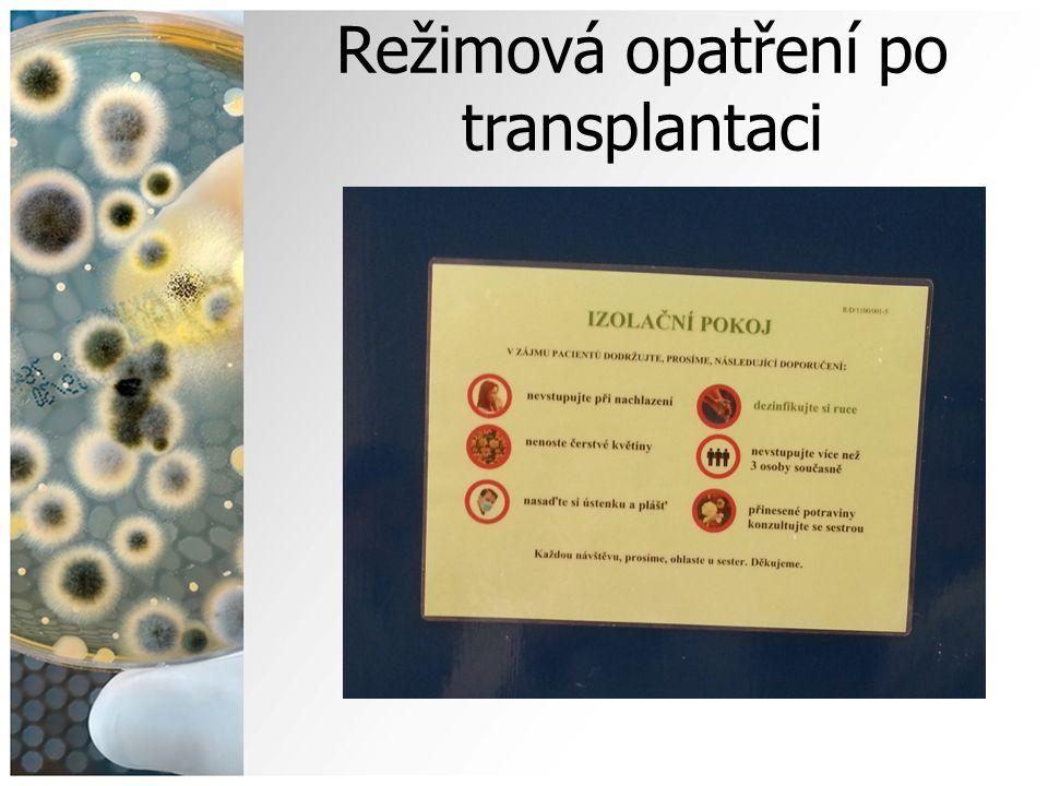 Režimová opatření po transplantaci