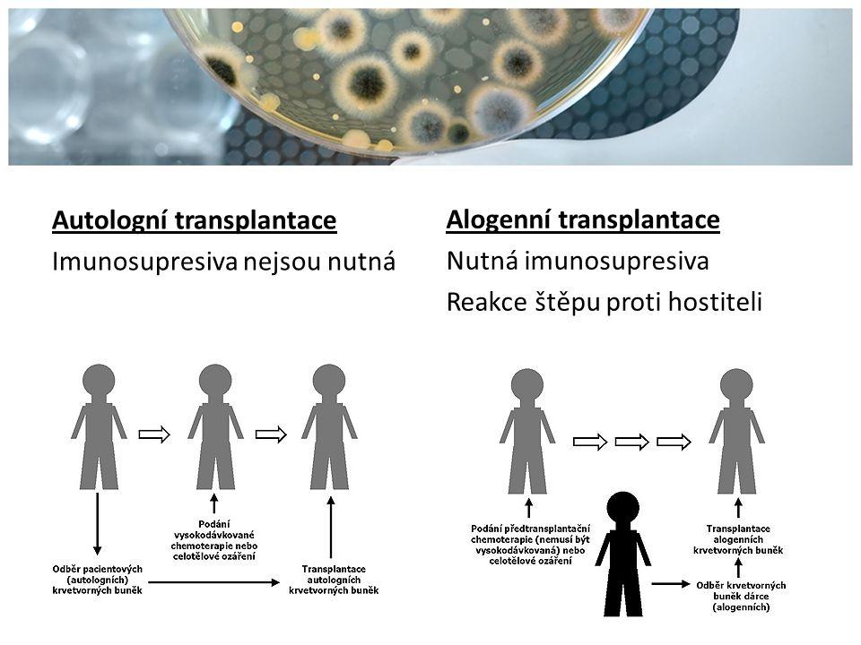 Autologní transplantace Imunosupresiva nejsou nutná Alogenní transplantace Nutná imunosupresiva Reakce štěpu proti hostiteli