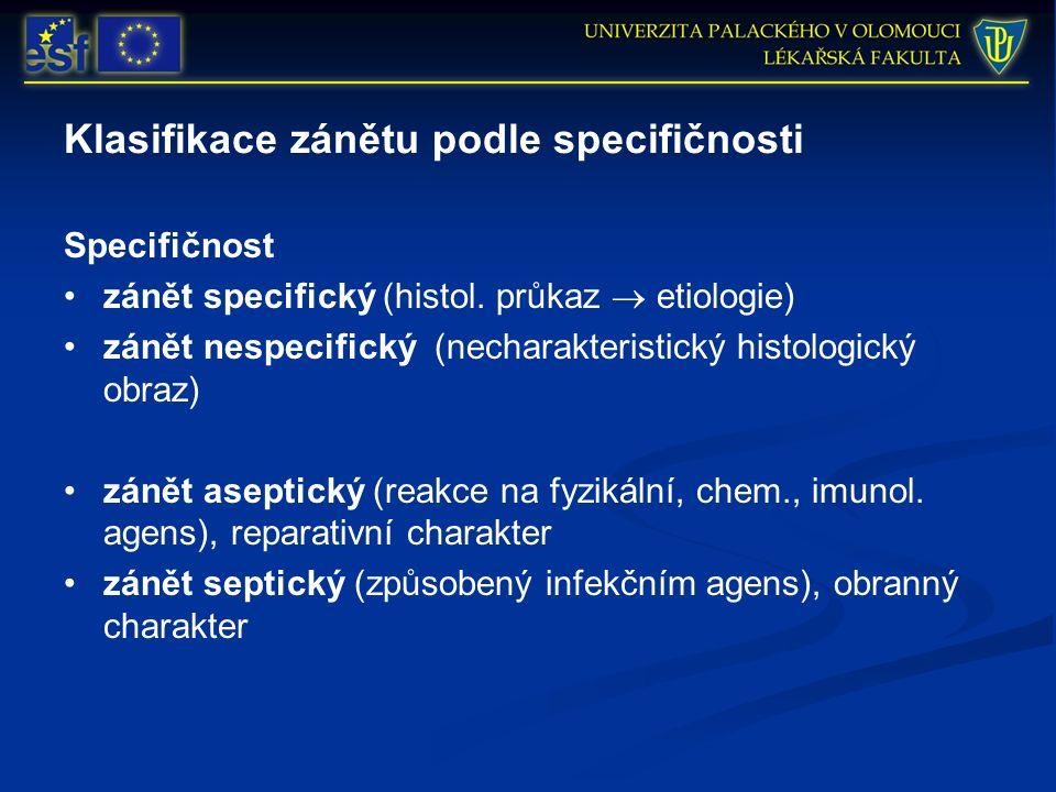 Klasifikace zánětu podle specifičnosti Specifičnost zánět specifický (histol. průkaz  etiologie) zánět nespecifický (necharakteristický histologický