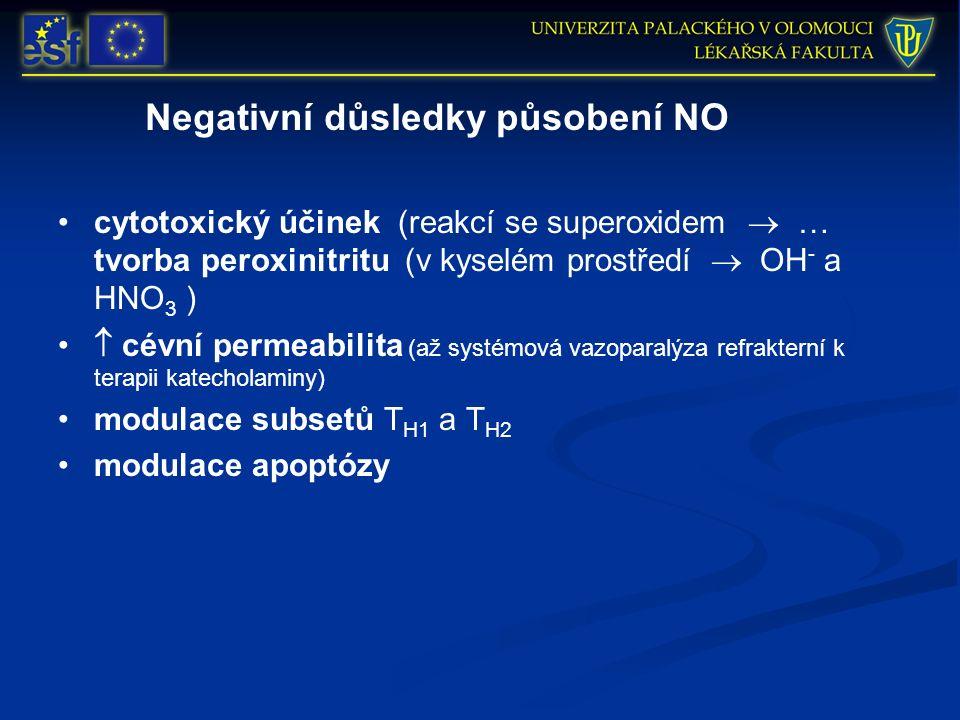 Negativní důsledky působení NO cytotoxický účinek (reakcí se superoxidem  … tvorba peroxinitritu (v kyselém prostředí  OH - a HNO 3 )  cévní permeabilita (až systémová vazoparalýza refrakterní k terapii katecholaminy) modulace subsetů T H1 a T H2 modulace apoptózy