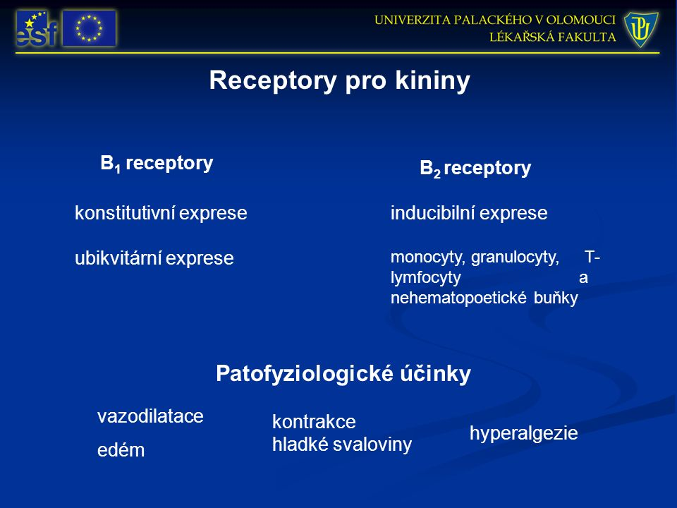 Receptory pro kininy B 1 receptory B 2 receptory ubikvitární exprese konstitutivní expreseinducibilní exprese monocyty, granulocyty, T- lymfocyty a nehematopoetické buňky Patofyziologické účinky vazodilatace edém kontrakce hladké svaloviny hyperalgezie