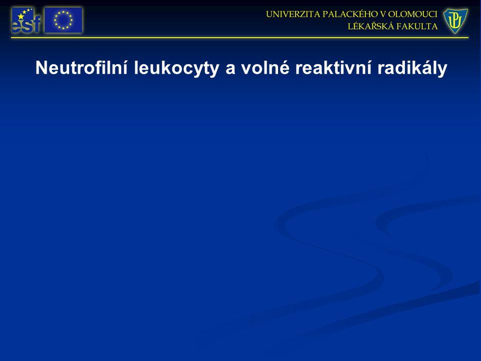 Neutrofilní leukocyty a volné reaktivní radikály