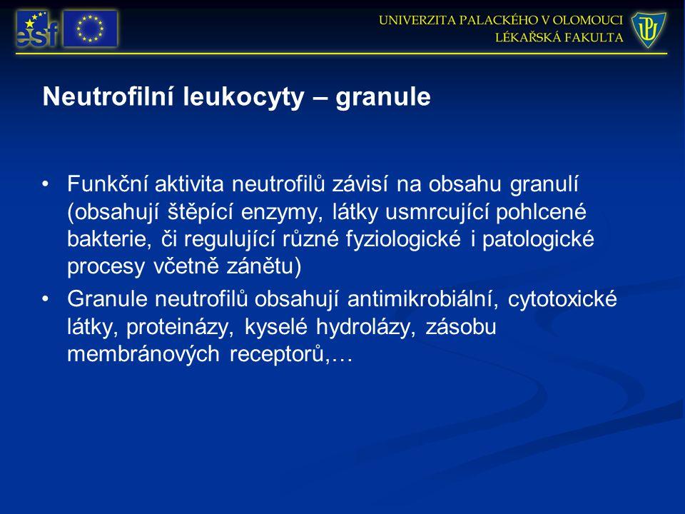 Neutrofilní leukocyty – granule Funkční aktivita neutrofilů závisí na obsahu granulí (obsahují štěpící enzymy, látky usmrcující pohlcené bakterie, či