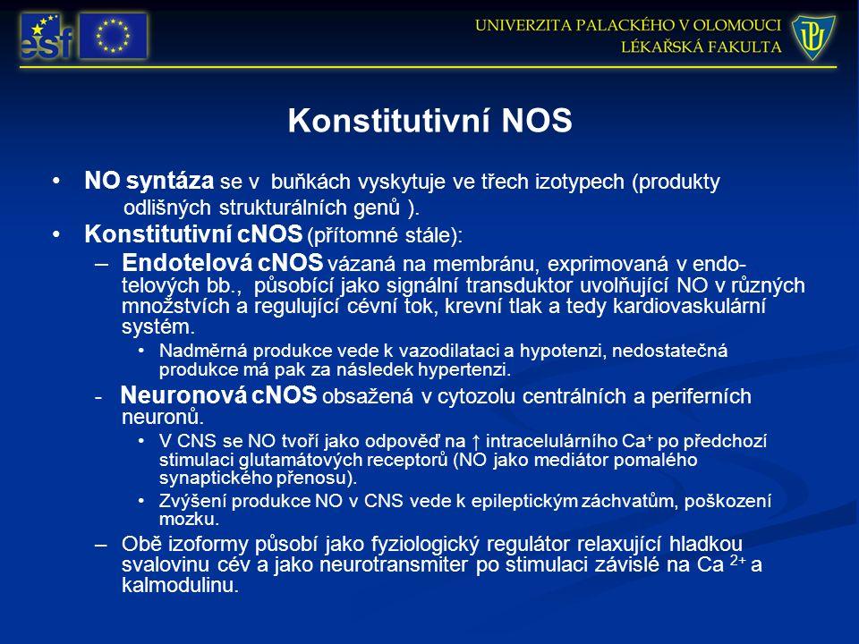 Konstitutivní NOS NO syntáza se v buňkách vyskytuje ve třech izotypech (produkty odlišných strukturálních genů ).