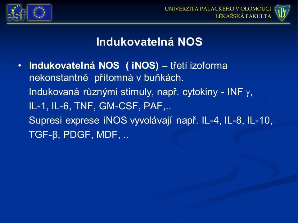 Indukovatelná NOS Indukovatelná NOS ( iNOS) – třetí izoforma nekonstantně přítomná v buňkách. Indukovaná různými stimuly, např. cytokiny - INF , IL-1