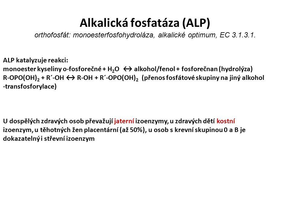 Alkalická fosfatáza (ALP) orthofosfát: monoesterfosfohydroláza, alkalické optimum, EC 3.1.3.1.