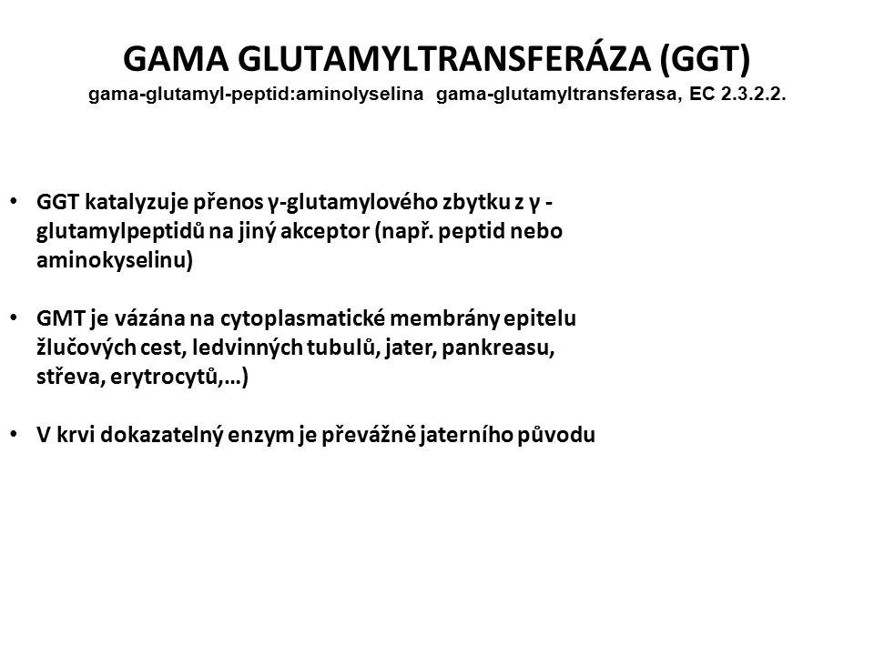 GAMA GLUTAMYLTRANSFERÁZA (GGT) gama-glutamyl-peptid:aminolyselina gama-glutamyltransferasa, EC 2.3.2.2.