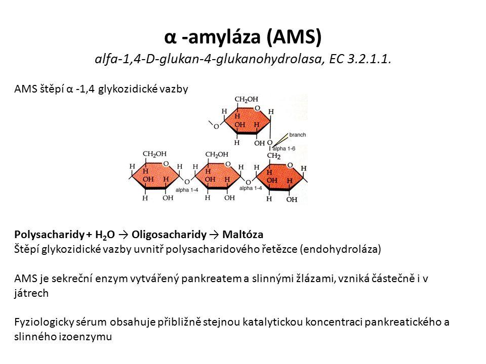 α -amyláza (AMS) alfa-1,4-D-glukan-4-glukanohydrolasa, EC 3.2.1.1.