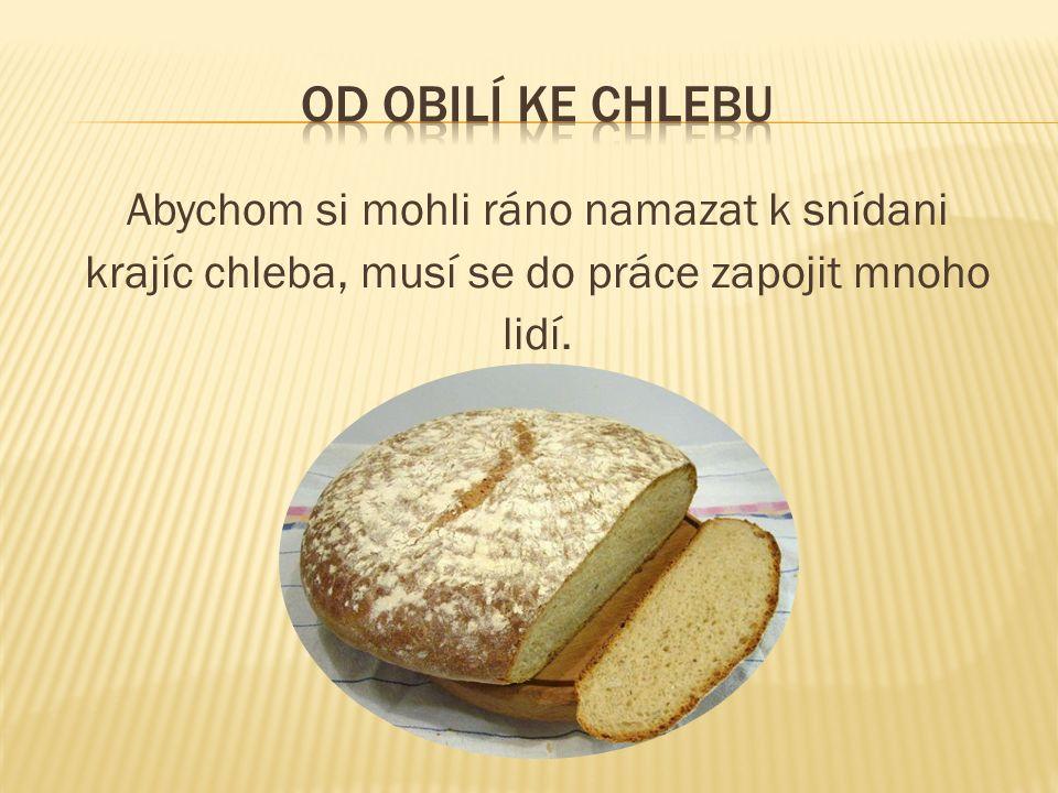 Abychom si mohli ráno namazat k snídani krajíc chleba, musí se do práce zapojit mnoho lidí.