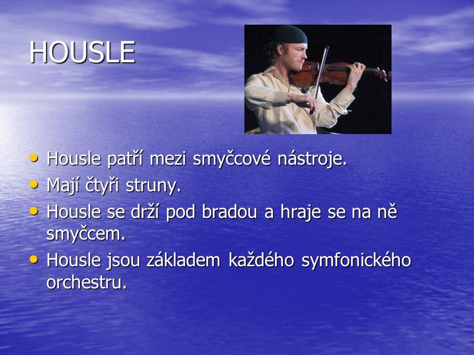 HOUSLE Housle patří mezi smyčcové nástroje. Housle patří mezi smyčcové nástroje.
