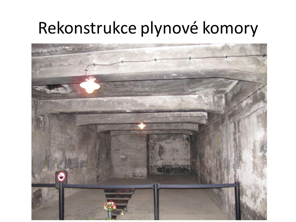 Rekonstrukce plynové komory