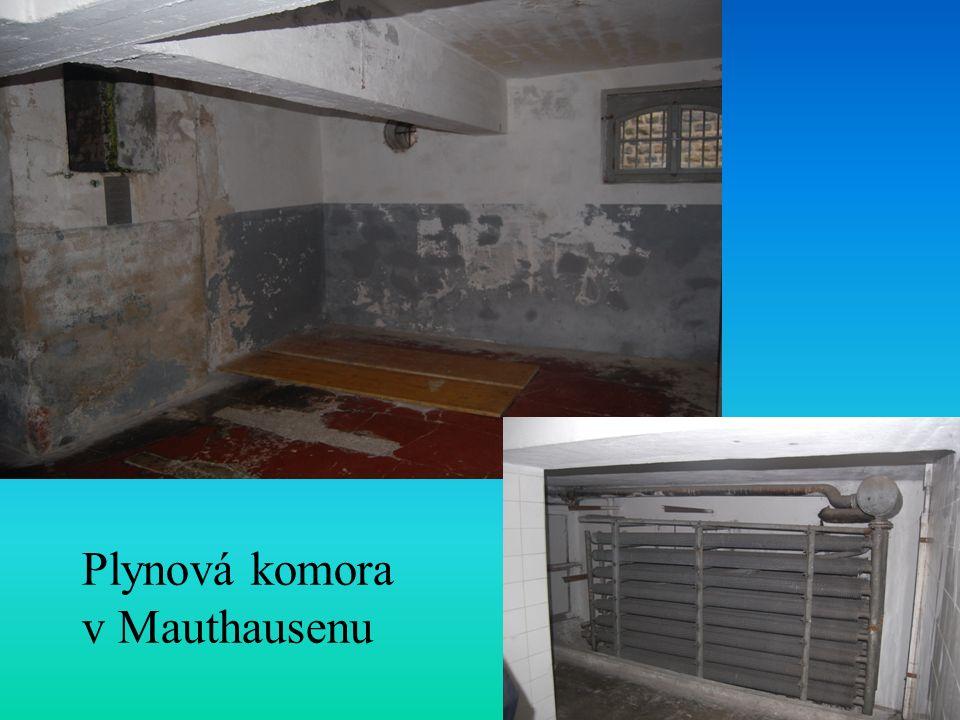 Plynová komora v Mauthausenu