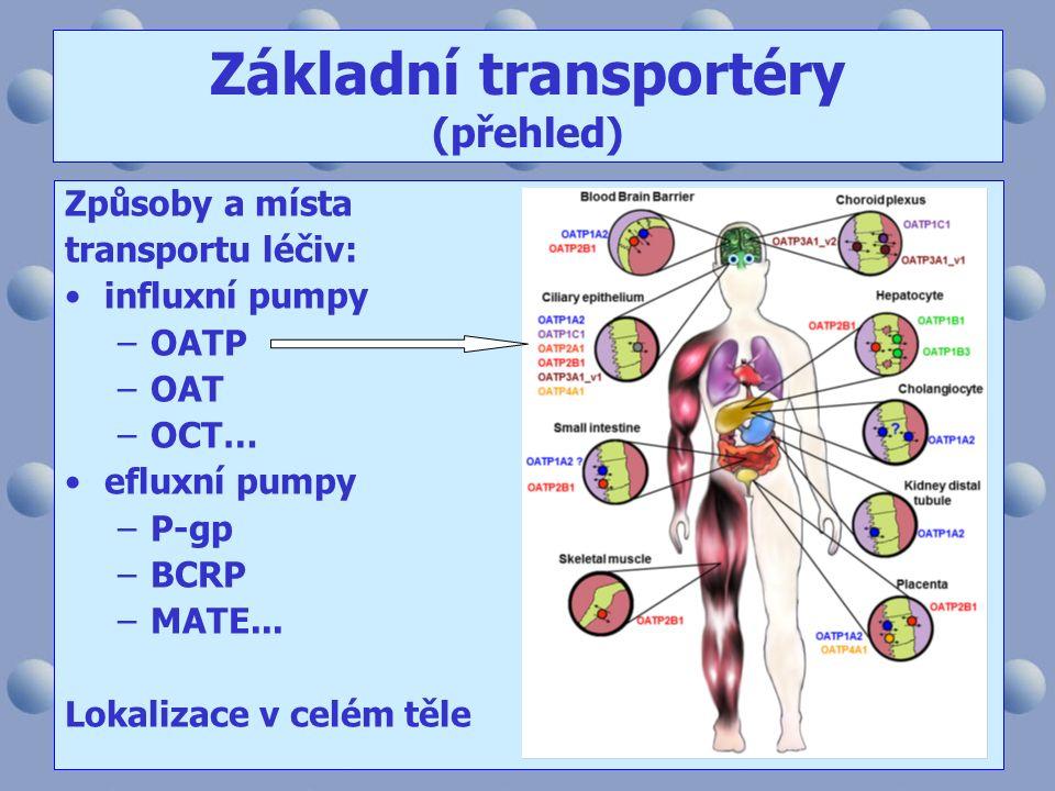 Základní transportéry (přehled) Způsoby a místa transportu léčiv: influxní pumpy –OATP –OAT –OCT… efluxní pumpy –P-gp –BCRP –MATE... Lokalizace v celé